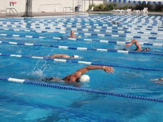 masterswim-pic-320x240